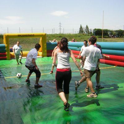 Futbalové ihrisko/hokejové ihrisko/vodný futbal