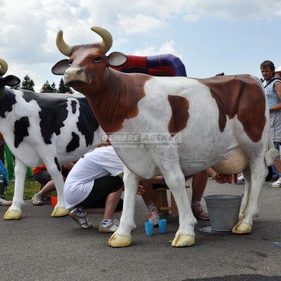 Simulátor dojenie krávy